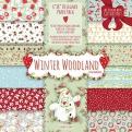 Набор бумаги 15*15 см 12 листов Winter Woodland