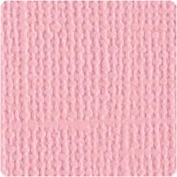 Кардсток  Bazzill Basics Quartz, c текстурой холста