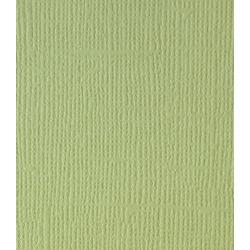Кардсток c текстурой холста, фисташковый