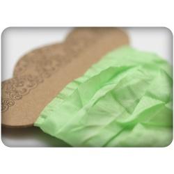 Шебби ленточка, свежая зелень, 15мм, 1м