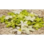 Набор цветов Prima зеленый микс, 24 шт