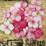 Набор цветов Prima, 70 шт