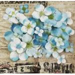 Набор цветов Prima, 70шт