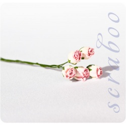 Бутоны бело-розовых роз, 5 шт
