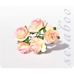 Желто-розовые розы, 20 мм