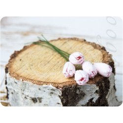Светло-розовые тюльпаны, 5шт
