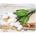 Белые тюльпаны, 5шт