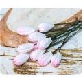 Розово-белые тюльпаны, 5шт