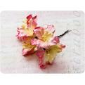 Желто-розовая лилия, 55 мм, 5шт