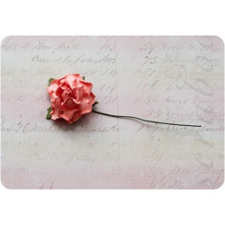 Светло-оранжевая роза, 35 мм, 1шт