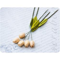 Кремовые тюльпаны, 5шт