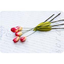 Кремово-розовые тюльпаны, 5шт